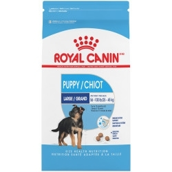 Royal Canin Dry Food  LargePuppy-1
