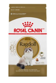 Royal Canin Dry Food Ragdoll Cats Adults-1