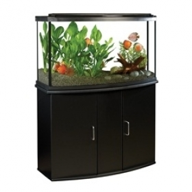 Fluval Premium Aquarium Kit with LED - 45 Bow - 170 L (45 US Gal) 0